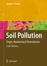 The Origin of Soil