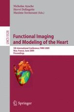 Characterization of Post-infarct Scars in a Porcine Model – A Combined Experimental and Theoretical Study