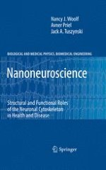 Introducing Nanoneuroscience as a Distinct Discipline
