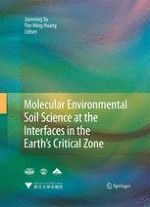 Advances in the Use of Synchrotron Radiation to Elucidate Environmental Interfacial Reaction Processes and Mechanisms in the Earth's Critical Zone