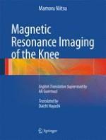 Anatomy of the Knee