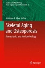 Age-Related Changes in Whole-Bone Structure and Strength