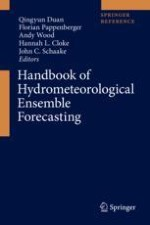 Hydrological Predictability, Scales, and Uncertainty Issues