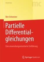 Modellierung mit Partiellen Differentialgleichungen