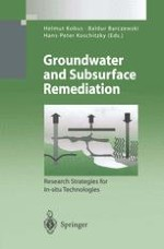 The Role of Large-Scale Experiments in Groundwater and Subsurface Remediation Research: The VEGAS Concept and Approach
