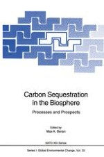 Global Carbon Cycle and Carbon Sequestration