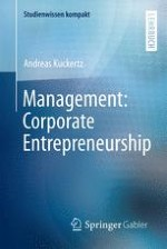 Was ist Corporate Entrepreneurship?