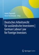 Interview mit Ian Walsh und André Papmehl: Die häufigsten Stolpersteine für ausländische Investoren in Deutschland