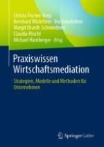 Rahmenbedingungen der Wirtschaftsmediation und mediativen Dienstleistung