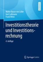Grundlagen der Investitionstheorie
