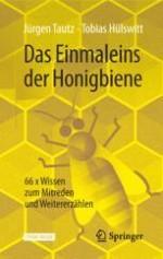 Die Honigjäger der Steinzeit