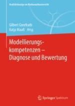 Diagnose und Bewertung beim mathematischen Modellieren