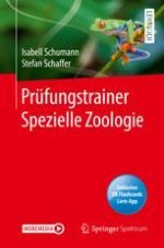 Einführung in die Spezielle Zoologie: Grundbegriffe erkennen und verstehen