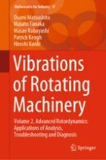 An Overview of Vibration Problems in Rotating Machinery