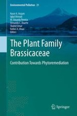 The Plant Family Brassicaceae: An Introduction