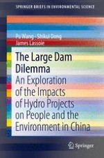A Global Review of Large Dam Construction