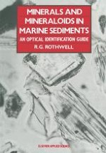 The Mineralogy of Marine Sediments