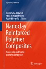 Nanoclay Modification and Functionalization for Nanocomposites Development: Effect on the Structural, Morphological, Mechanical and Rheological Properties