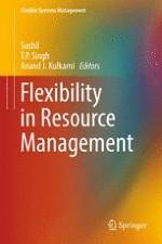 Valuation of Flexibility Initiatives: A Conceptual Framework