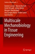 A Review of Bioreactors and Mechanical Stimuli