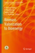 Agro-Industrial Waste Valorization to Energy and Value Added Products for Environmental Sustainability