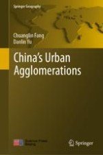 Overview of the Fundamental Connotation and Strategic Position of China's Urban Agglomerations