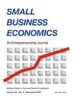 Small Business Economics 4/2009