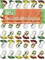 Acta Neuropathologica 5/2019