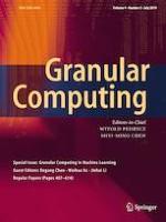 Granular Computing 3/2019