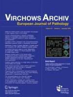 Virchows Archiv 4/2004