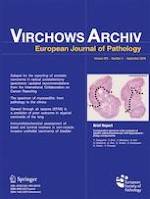 Virchows Archiv 3/2019