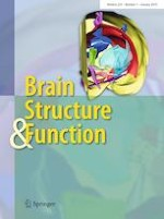 Brain Structure and Function 1/2019