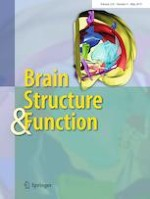 Brain Structure and Function 4/2019