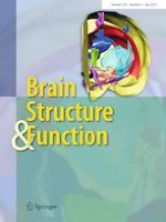 Brain Structure and Function 6/2019
