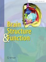 Brain Structure and Function 8/2019