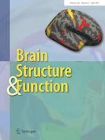 Brain Structure and Function 3/2021