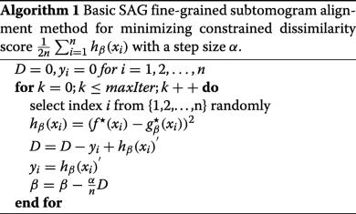 Fine-grained alignment of cryo-electron subtomograms based