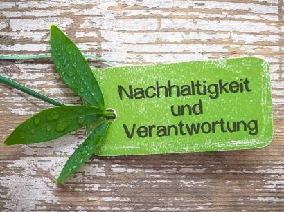 Grünes Marketing: Der deutsche Bio-Markt und Nachhaltigkeit (German Edition)