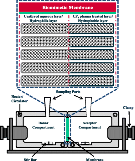 Schematic illustration of a biomimetic membrane and the membrane-permeation dissolution apparatus