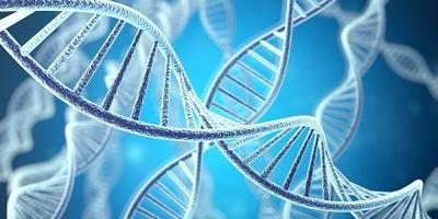 Genome Medicine Home Page