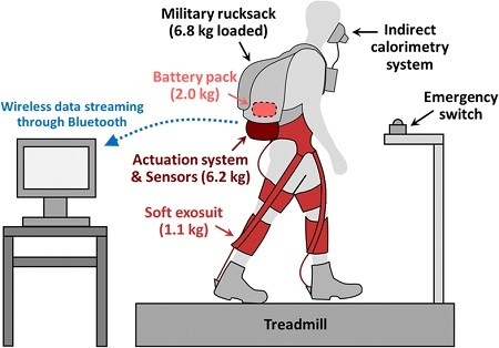 Autonomous multi-joint soft exosuit with augmentation-power-based control parameter tuning reduces energy cost of loaded walking