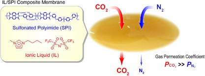 Sulfonated polyimide/ionic liquid composite membranes for carbon dioxide separation