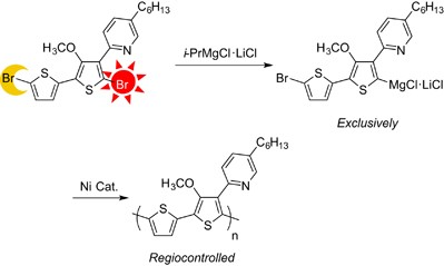 Regioselective halogen–magnesium exchange reaction of a bithiophene derivative bearing methoxy and pyridine groups at the β-position and Kumada coupling polymerization