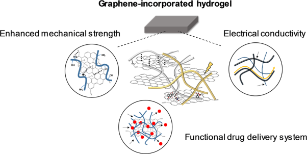 Graphene oxide-incorporated hydrogels for biomedical applications