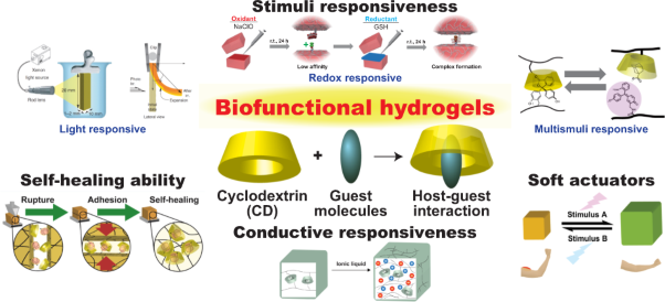 Biofunctional hydrogels based on host–guest interactions