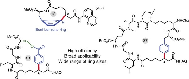 A general strategy for synthesis of cyclophane-braced peptide macrocycles via palladium-catalysed intramolecular <i>sp</i><sup>3</sup> C−H arylation