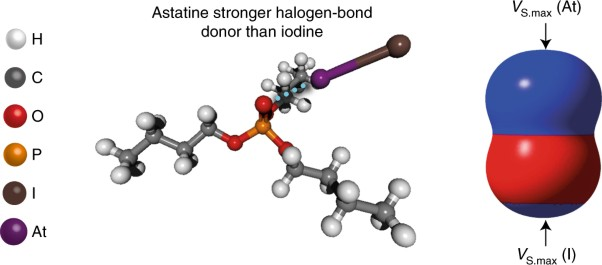 Experimental and computational evidence of halogen bonds involving astatine