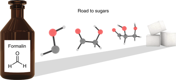 Gas-phase sugar formation using hydroxymethylene as the reactive formaldehyde isomer