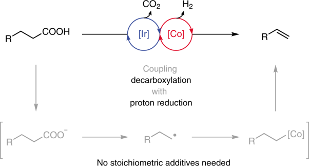 Catalytic dehydrogenative decarboxyolefination of carboxylic acids