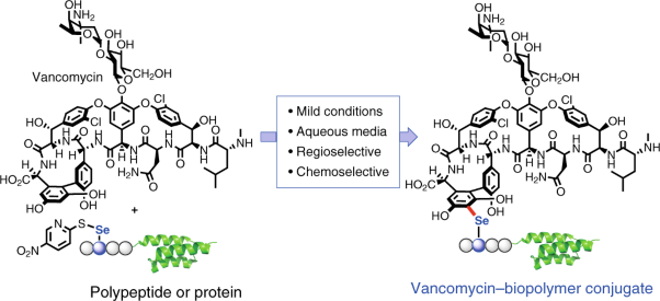 A chemoselective strategy for late-stage functionalization of complex small molecules with polypeptides and proteins